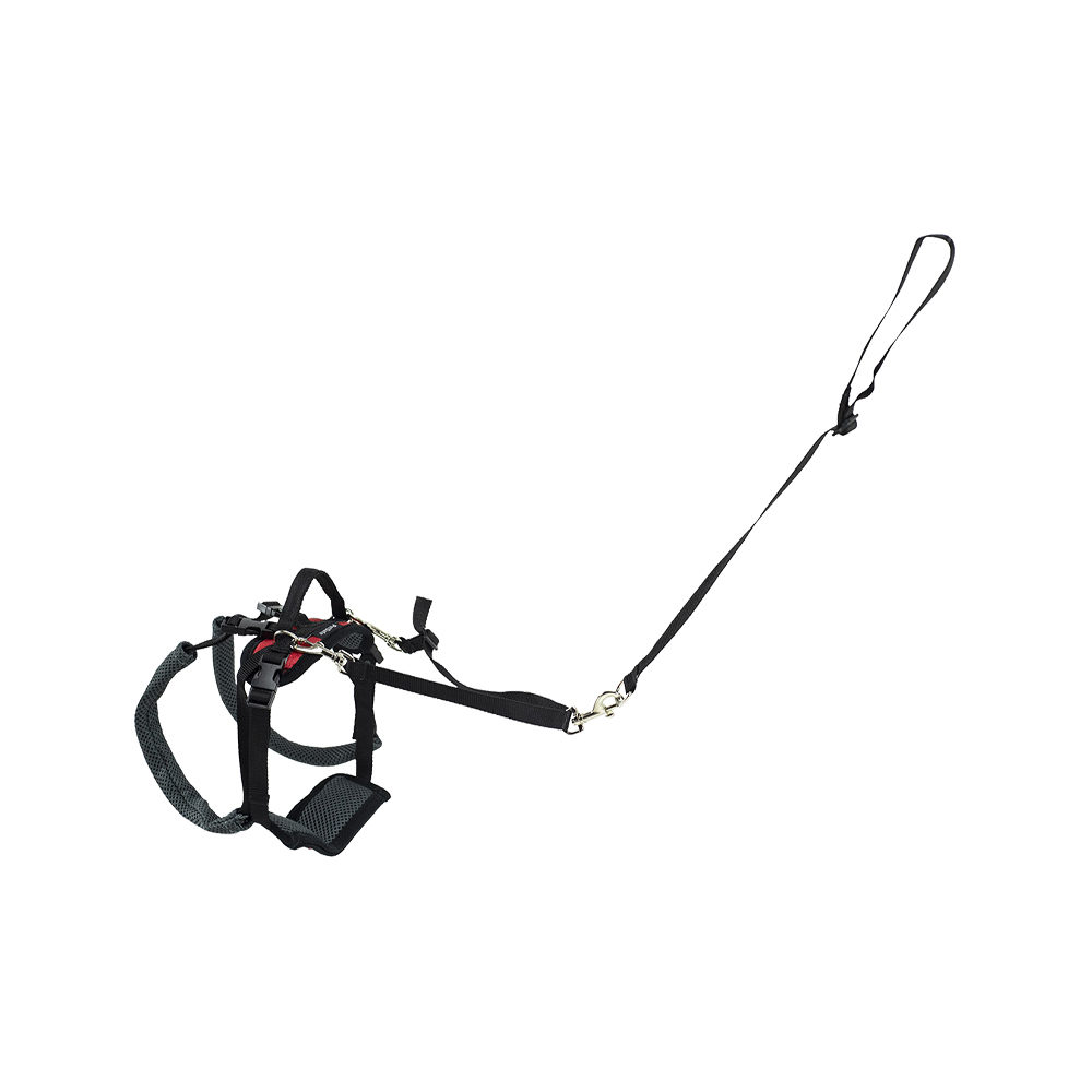 Petsafe Carelift Rear Support Harness - Rouge - S