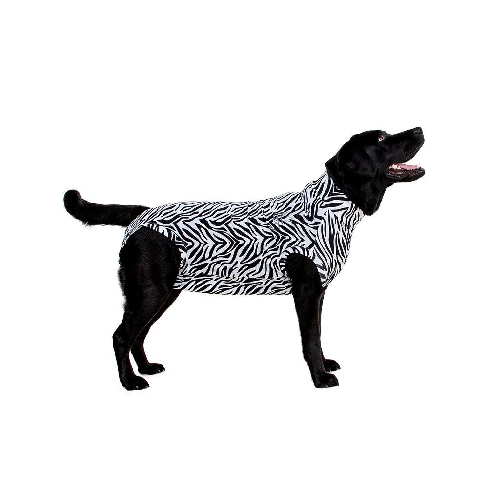Medical Pet Shirt - Chien - Motif zèbre