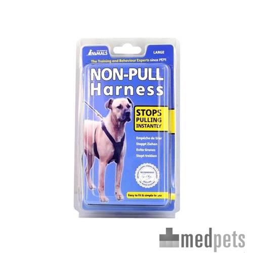 Company of Animals Anti-Ziehleine