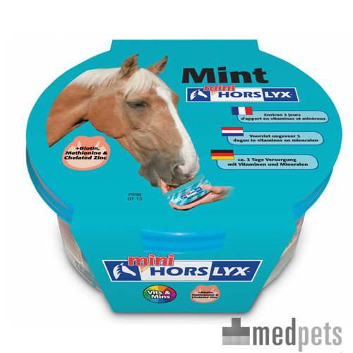 Horslyx Mini Leckmasse - Mint