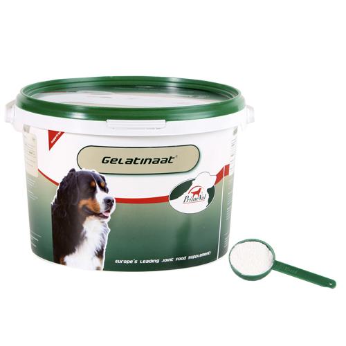 PrimeVal Gelatinaat Hund