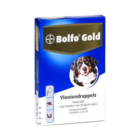 Bolfo Gold Chien 400 - 2 pipettes