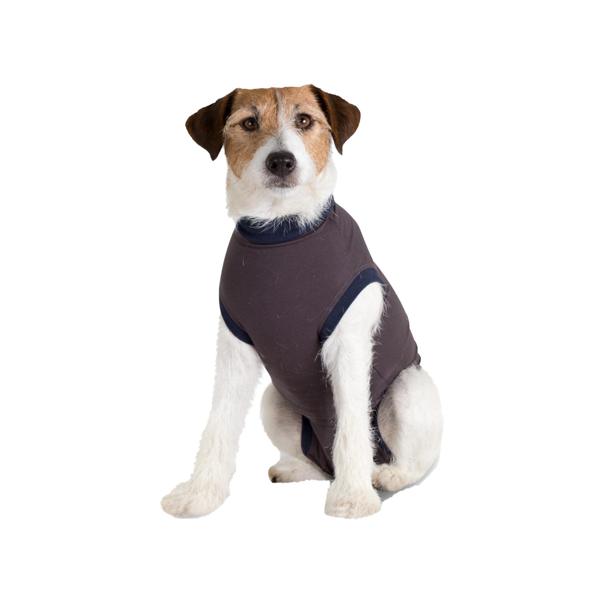 Jacketz Medical Body Suit Hund