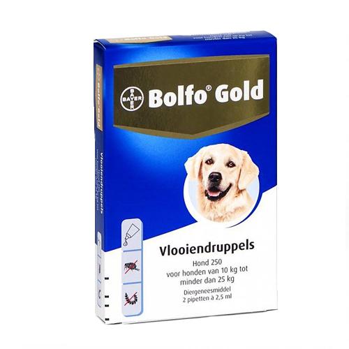 Bolfo Gold Chien 250 - 2 pipettes