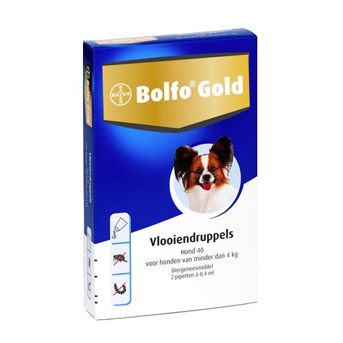 Bolfo Gold Chien 40 - 2 pipettes