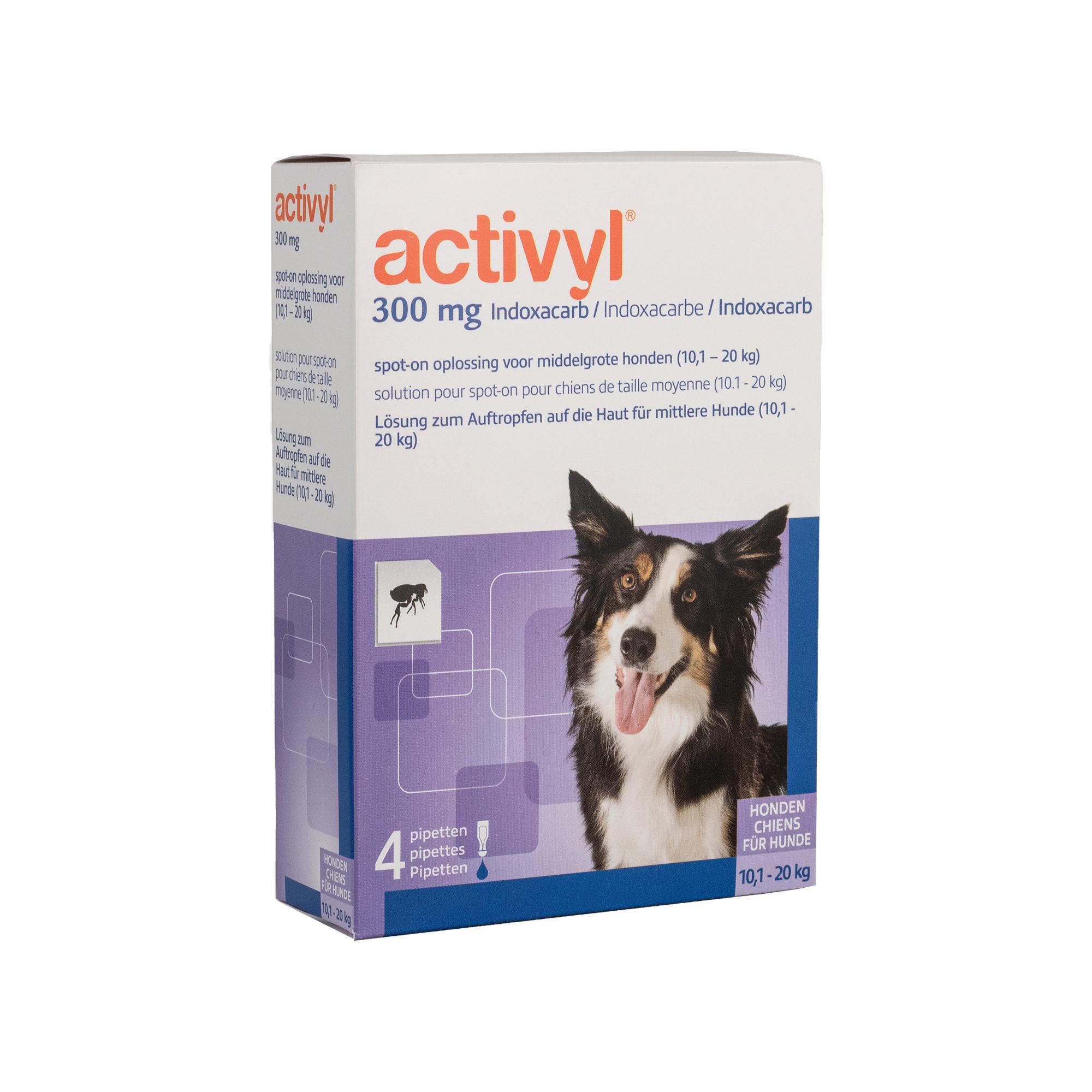 Activyl Spot-on Hund M - 10 - 20 kg - 4 Pipetten