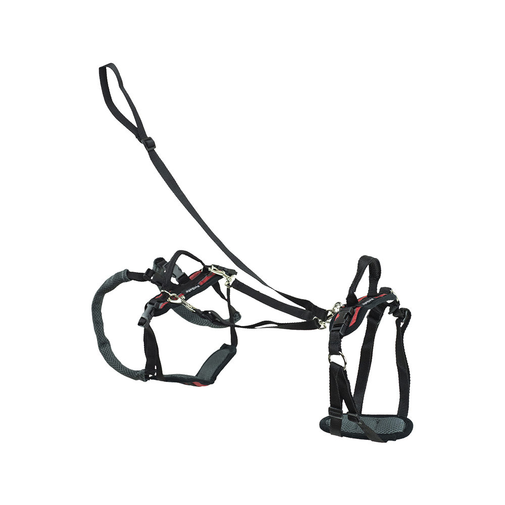 Petsafe Carelift Support Harness Complete - Rouge - S