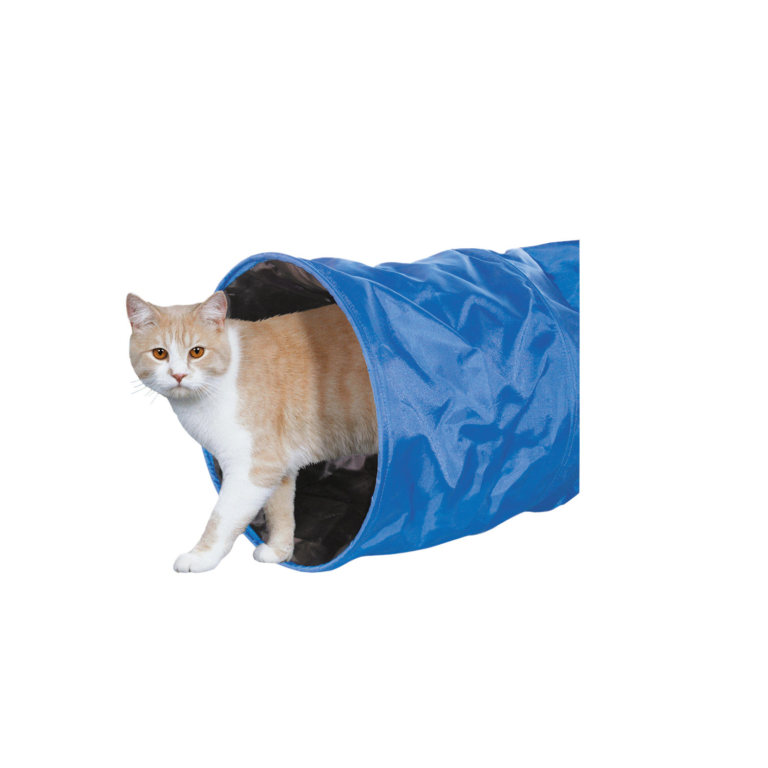 Nobby - Tunnel pour chat