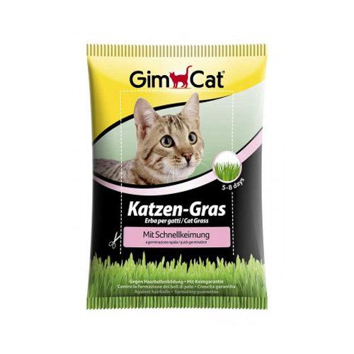 GimCat - Herbe à chat à germination rapide