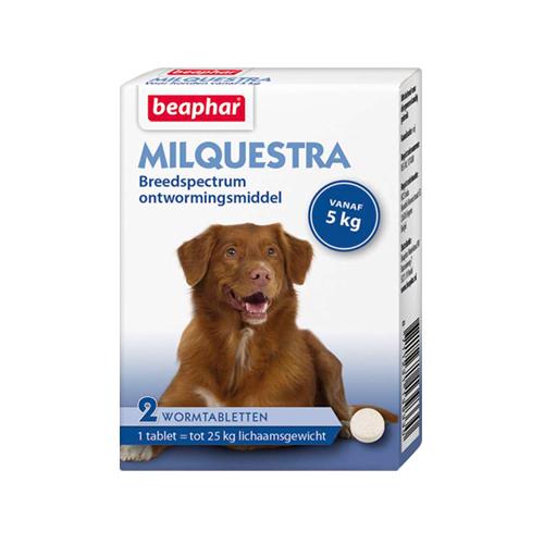 Beaphar Milquestra - Grand chien - 2 comprimés