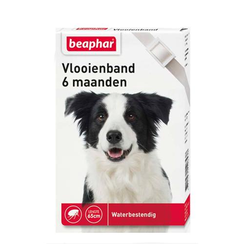 Beaphar - Collier anti puce pour chien- 6 mois - Blanc
