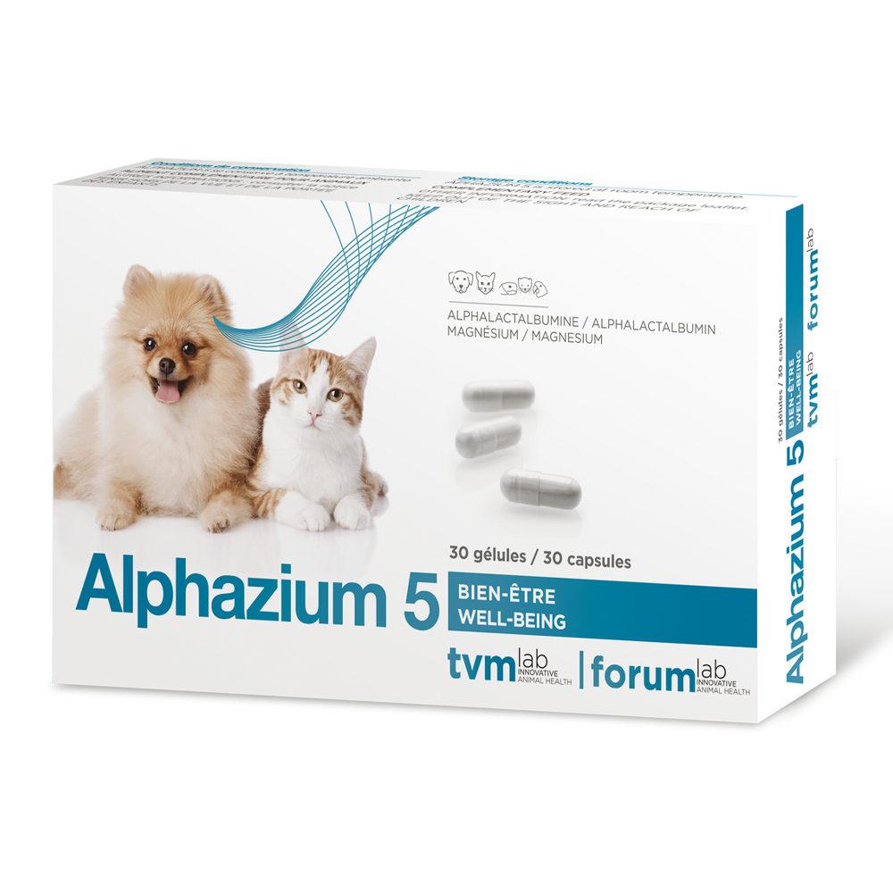TVM Alphazium 6