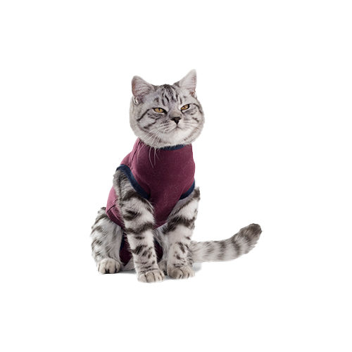 Jacketz Medical Body Suit - Chat