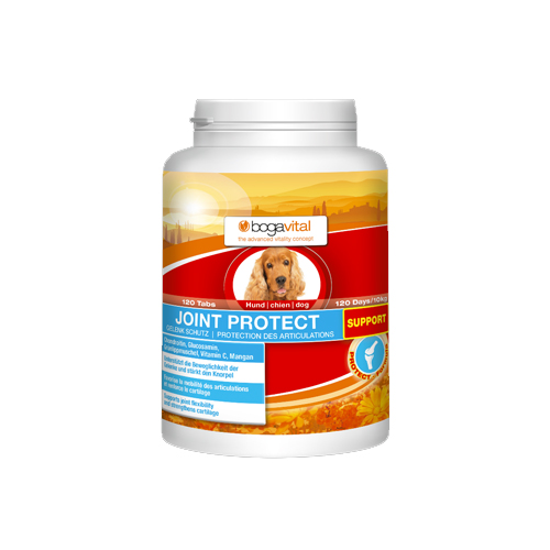 Bogavital Joint Protect Support - Chien