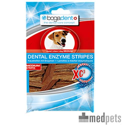 Bogadent Enzyme Stripes Chien - Medium