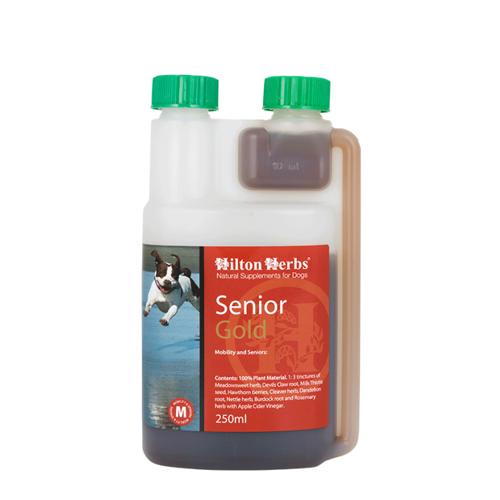 Hilton Herbs Senior Gold - Chien