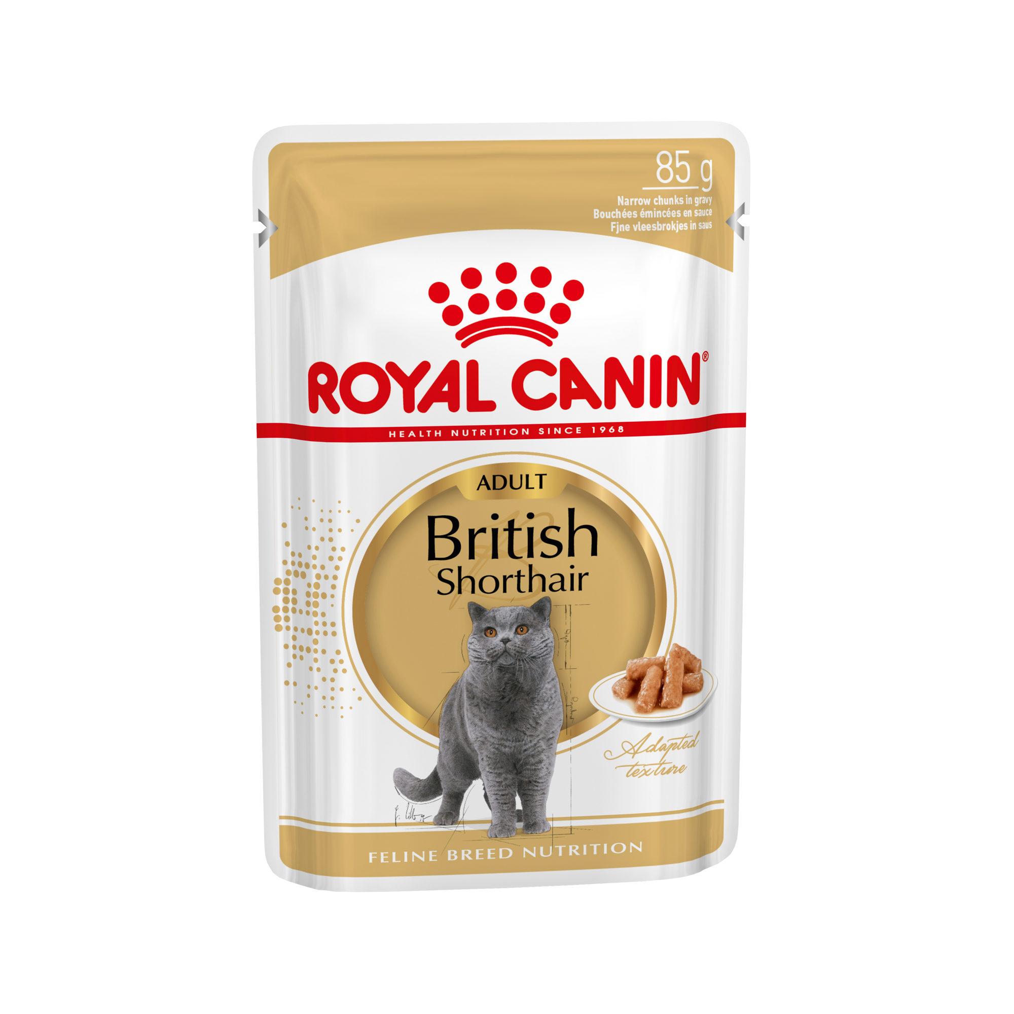 Royal Canin British Shorthair Adult Katzenfutter - Frischebeutel