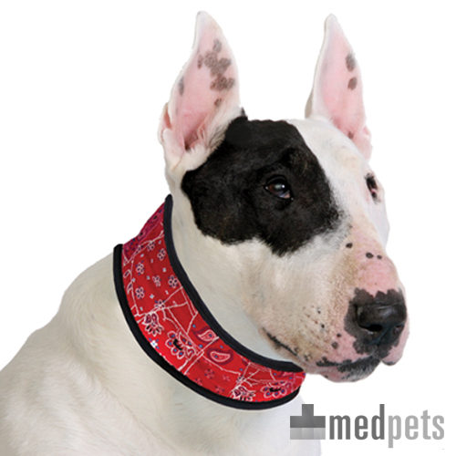Aqua Coolkeeper Collier pour chien - Red Western