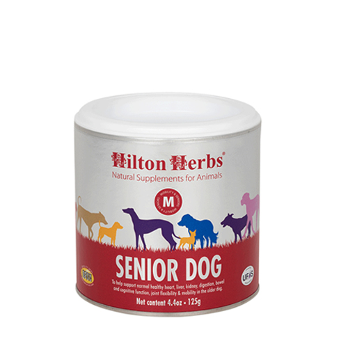 Hilton Herbs Senior - Chien