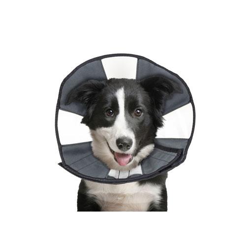 ZenPet Zen Collar