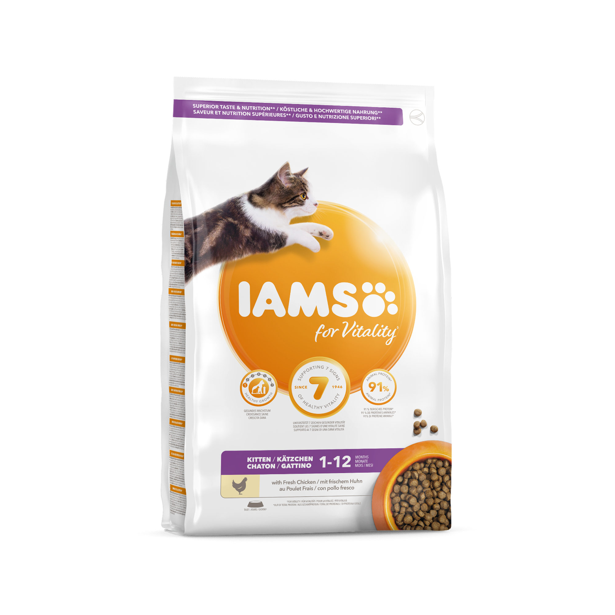 IAMS Kitten & Junior