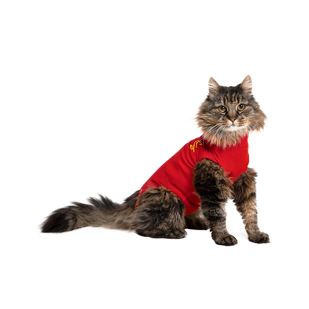 Medical Pet Shirt - Chat - Rouge - S