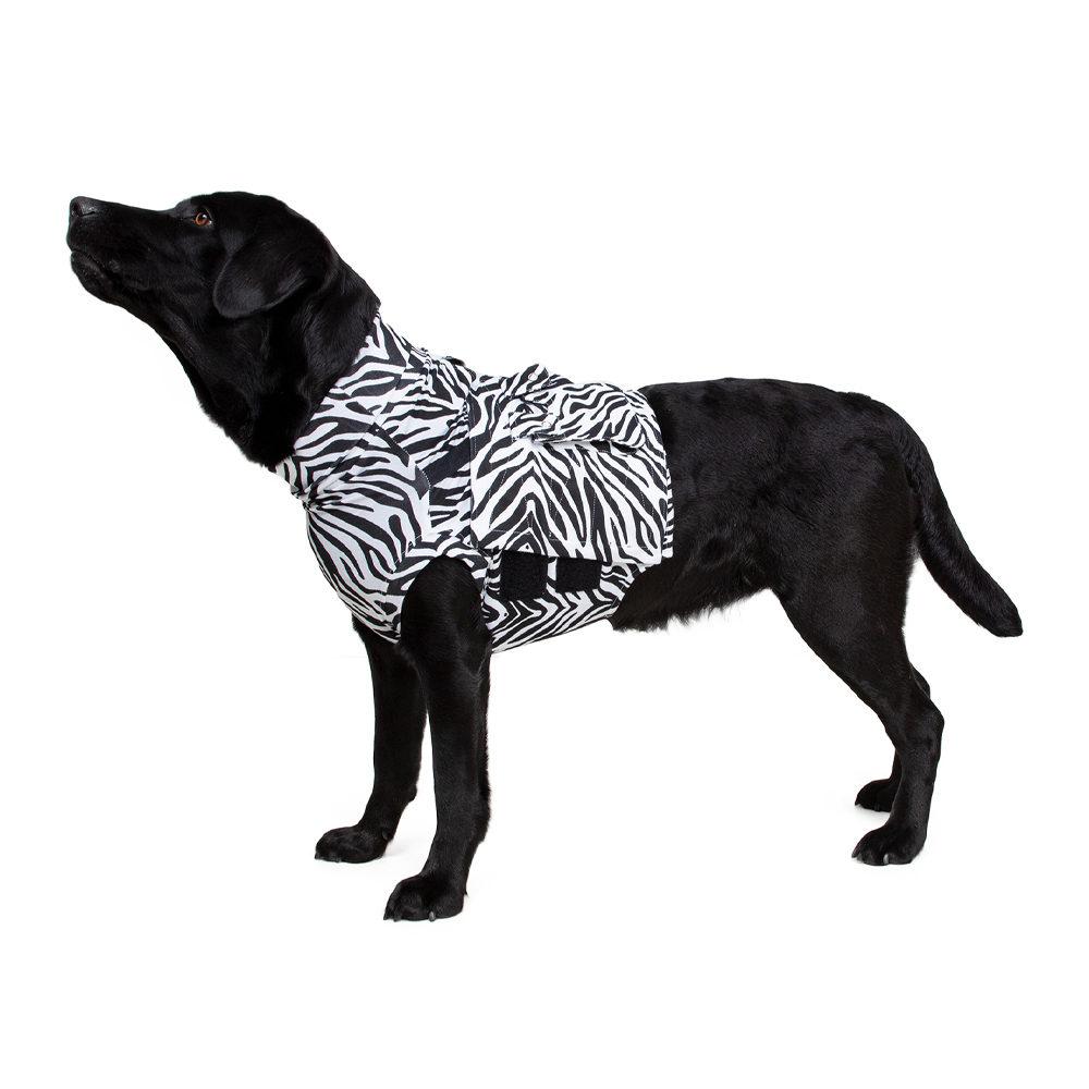 Medical Pet Shirt Top Shirt - Imprimé zèbre