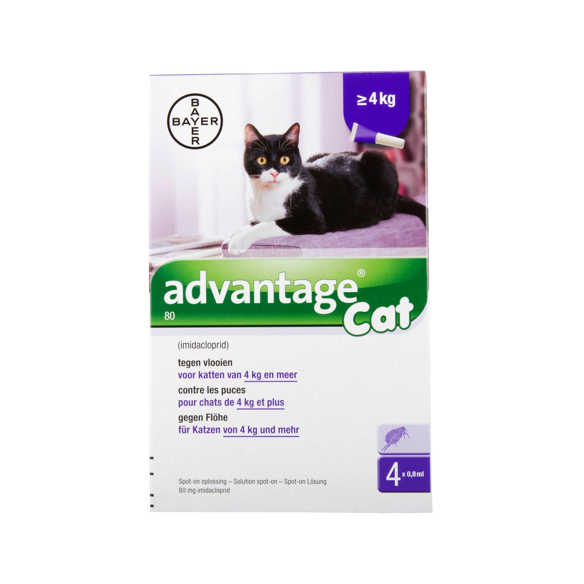 Advantage 80 - Chat > 4 kg - 4 pipettes