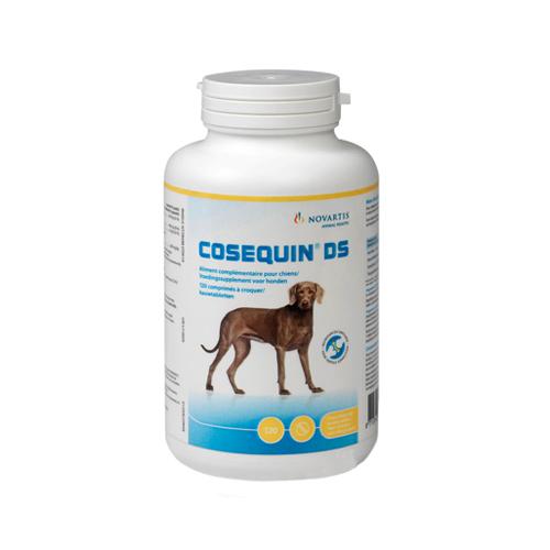 Cosequin DS - Chien