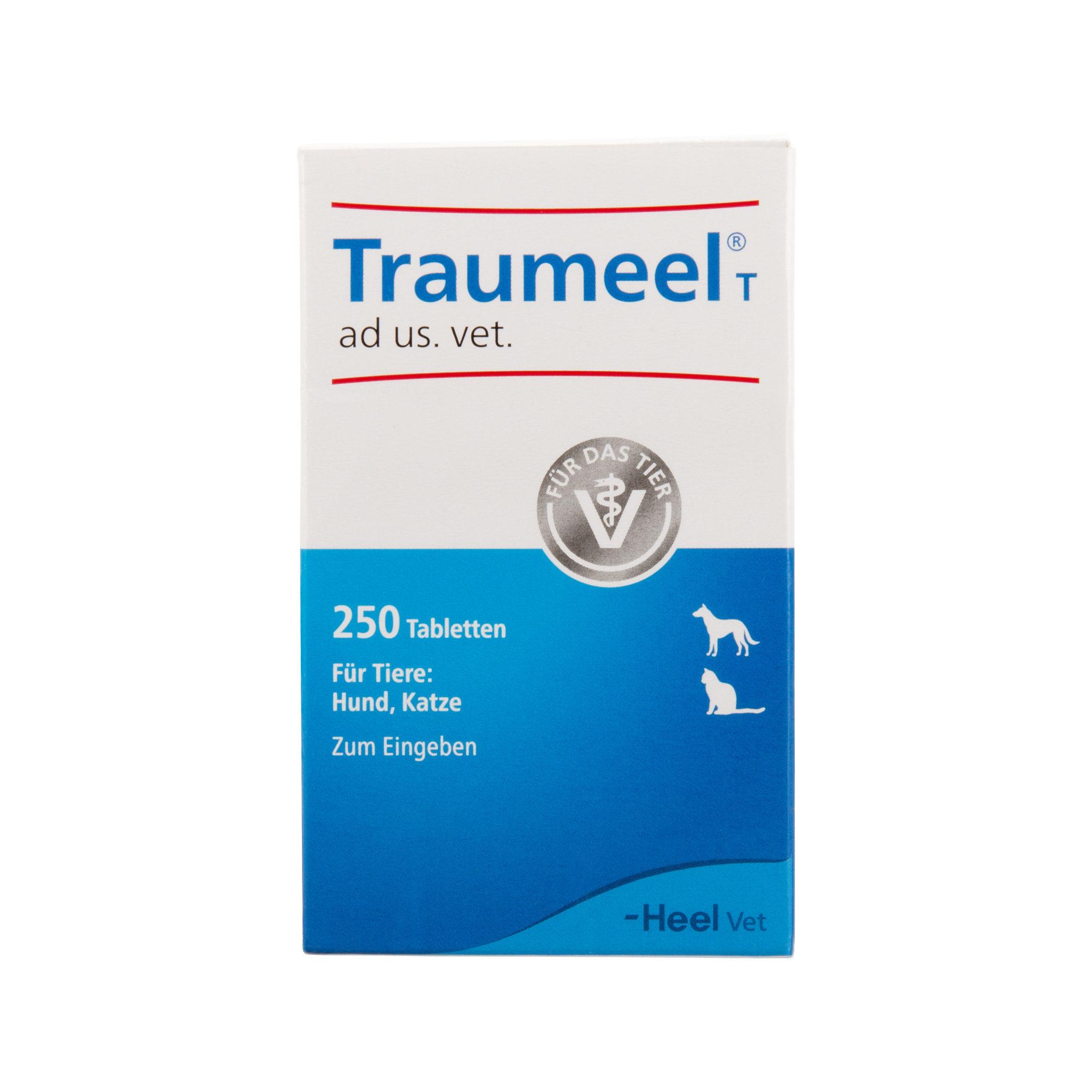Traumeel T Tabletten - 250 Stück