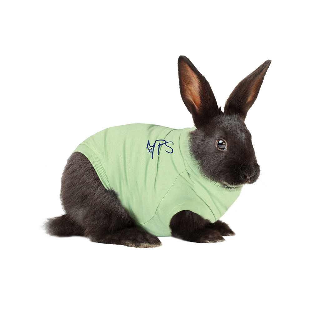 Medical Pet Shirt Kaninchen
