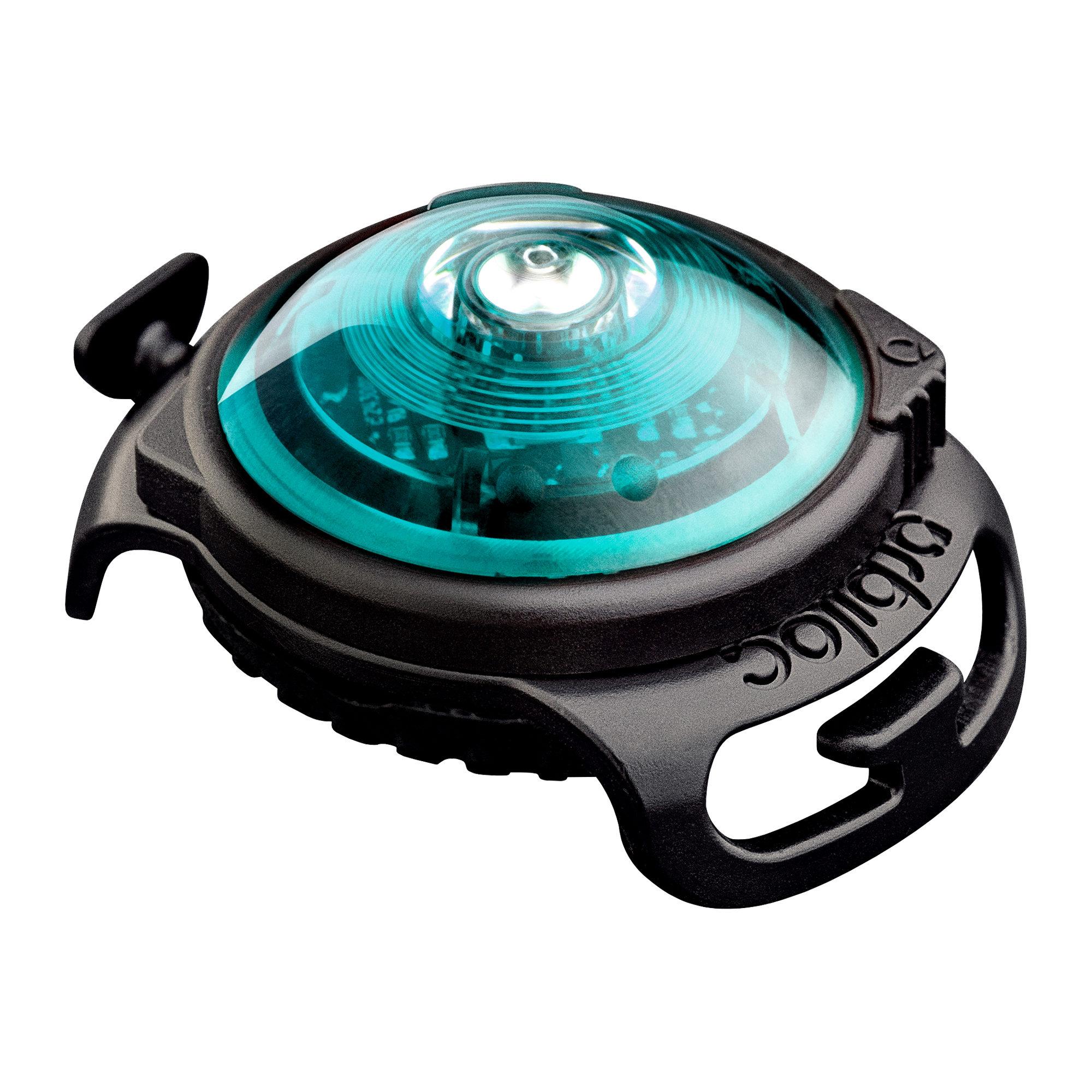 Orbiloc Dog Dual Safety Light - Türkis
