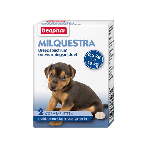 Beaphar Milquestra - Petit chien / chiot