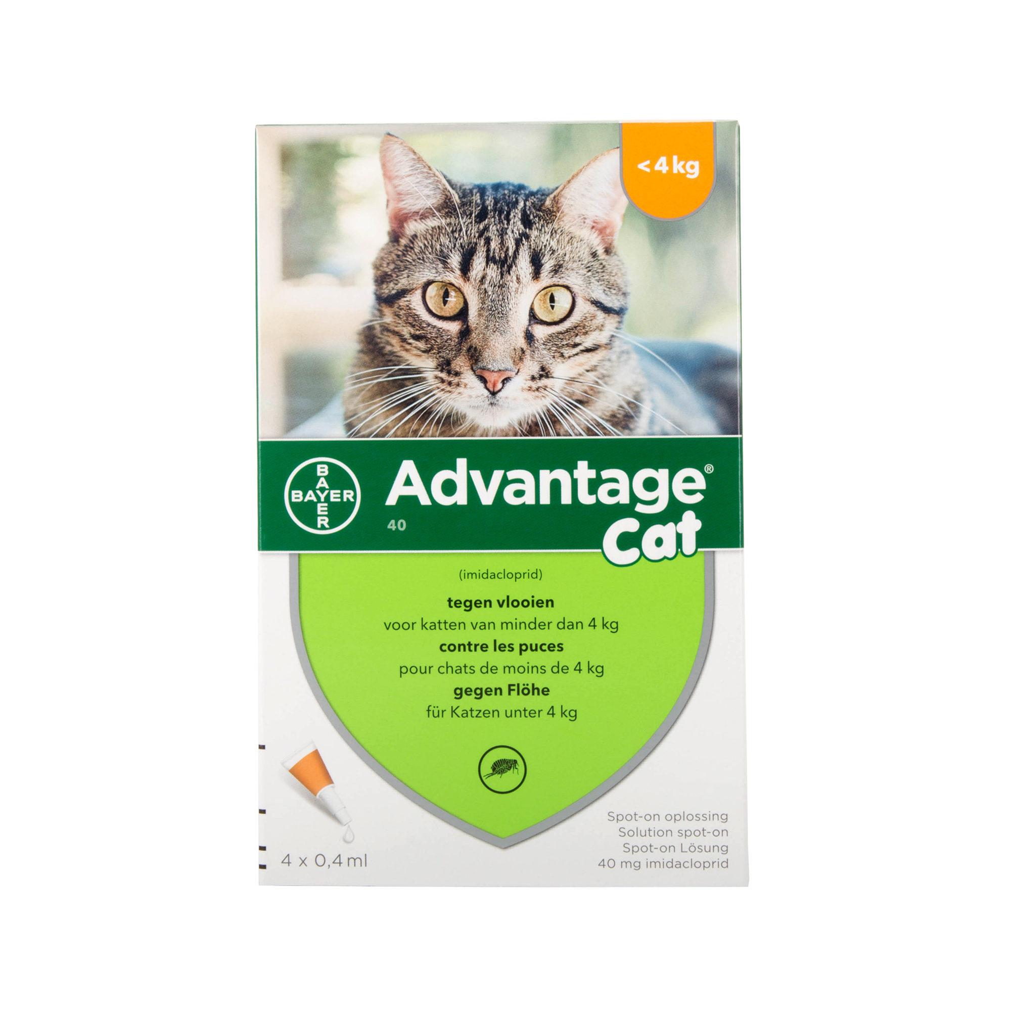 Advantage 40 Katze - bis zu 4 kg - 4 Pipetten