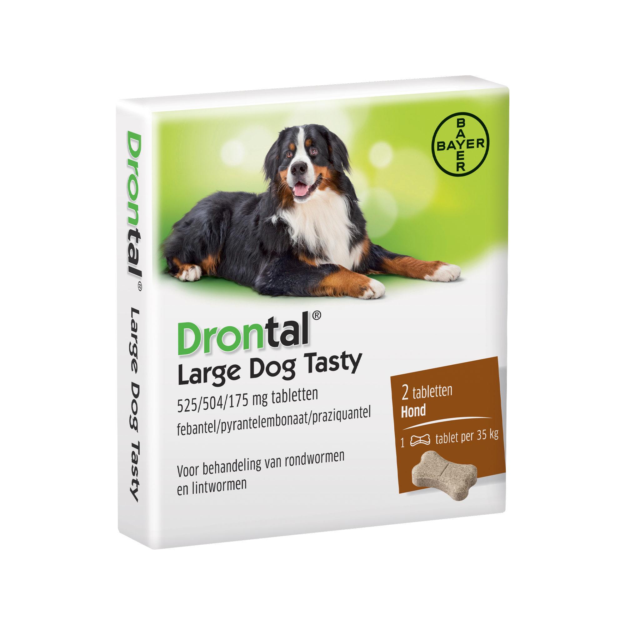 Drontal Large Dog Tasty