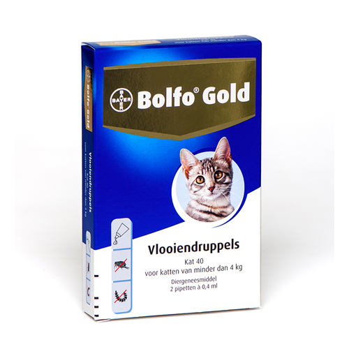 Bolfo Gold Chats 40 - 2 pipettes