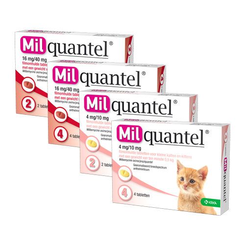 Milquantel (4 mg) - Petit Chat / Chaton