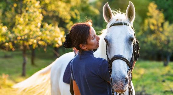 Alles für die Gesundheit Ihres Pferdes