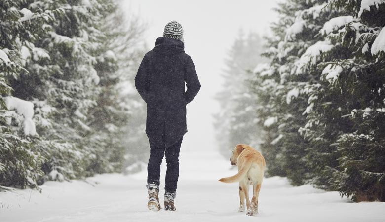 Hund mit Frauchen im Schnee